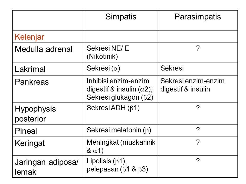 SimpatisParasimpatis Kelenjar Medulla adrenal Sekresi NE/ E (Nikotinik) ? Lakrimal Sekresi (  ) Sekresi Pankreas Inhibisi enzim-enzim digestif & insu