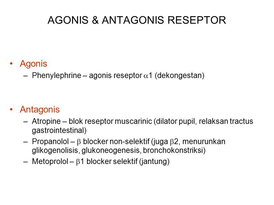 AGONIS & ANTAGONIS RESEPTOR Agonis –Phenylephrine – agonis reseptor  1 (dekongestan) Antagonis –Atropine – blok reseptor muscarinic (dilator pupil, relaksan tractus gastrointestinal) –Propanolol –  blocker non-selektif (juga  2, menurunkan glikogenolisis, glukoneogenesis, bronchokonstriksi) –Metoprolol –  1 blocker selektif (jantung)