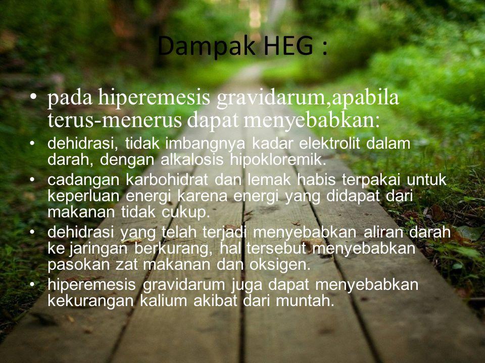 Dampak HEG : pada hiperemesis gravidarum,apabila terus-menerus dapat menyebabkan: dehidrasi, tidak imbangnya kadar elektrolit dalam darah, dengan alka