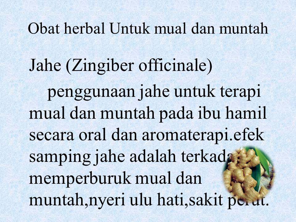 Obat herbal Untuk mual dan muntah Jahe (Zingiber officinale) penggunaan jahe untuk terapi mual dan muntah pada ibu hamil secara oral dan aromaterapi.e