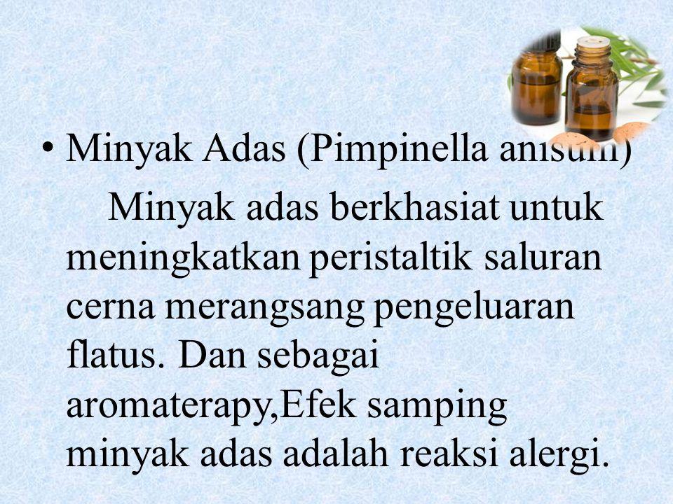 Minyak Adas (Pimpinella anisum) Minyak adas berkhasiat untuk meningkatkan peristaltik saluran cerna merangsang pengeluaran flatus. Dan sebagai aromate