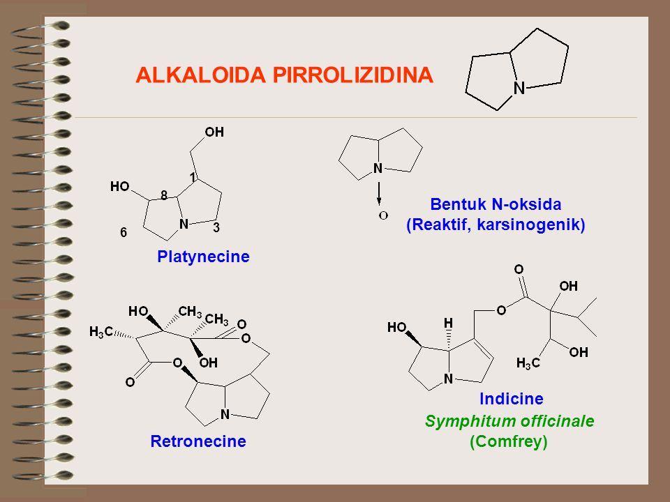 ALKALOIDA PIRROLIZIDINA 1 3 6 8 Platynecine Bentuk N-oksida (Reaktif, karsinogenik) Retronecine Indicine Symphitum officinale (Comfrey)