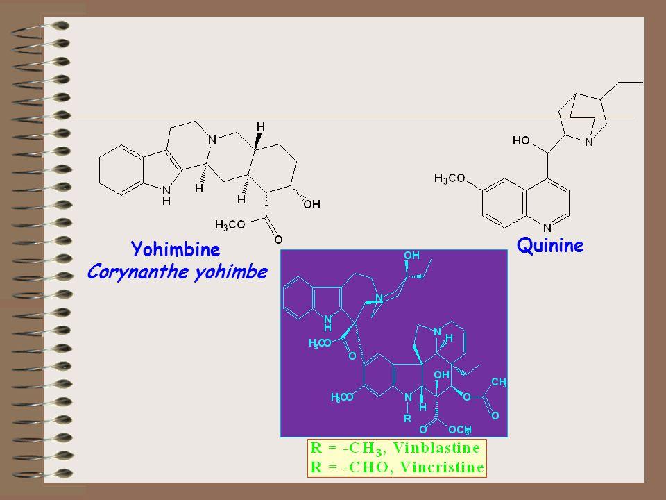 Quinine Yohimbine Corynanthe yohimbe