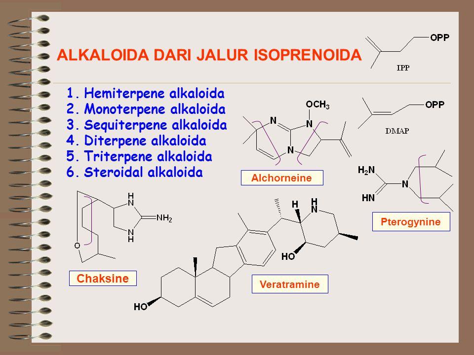 ALKALOIDA DARI JALUR ISOPRENOIDA 1.Hemiterpene alkaloida 2.Monoterpene alkaloida 3.Sequiterpene alkaloida 4.Diterpene alkaloida 5.Triterpene alkaloida 6.Steroidal alkaloida Chaksine Alchorneine Pterogynine Veratramine