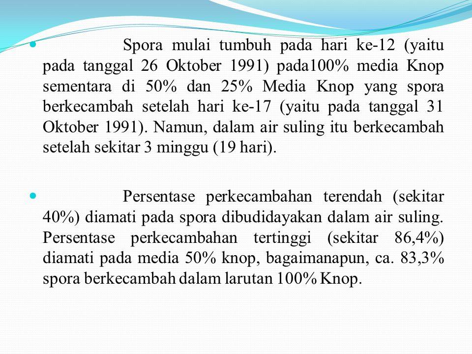 Spora mulai tumbuh pada hari ke-12 (yaitu pada tanggal 26 Oktober 1991) pada100% media Knop sementara di 50% dan 25% Media Knop yang spora berkecambah setelah hari ke-17 (yaitu pada tanggal 31 Oktober 1991).