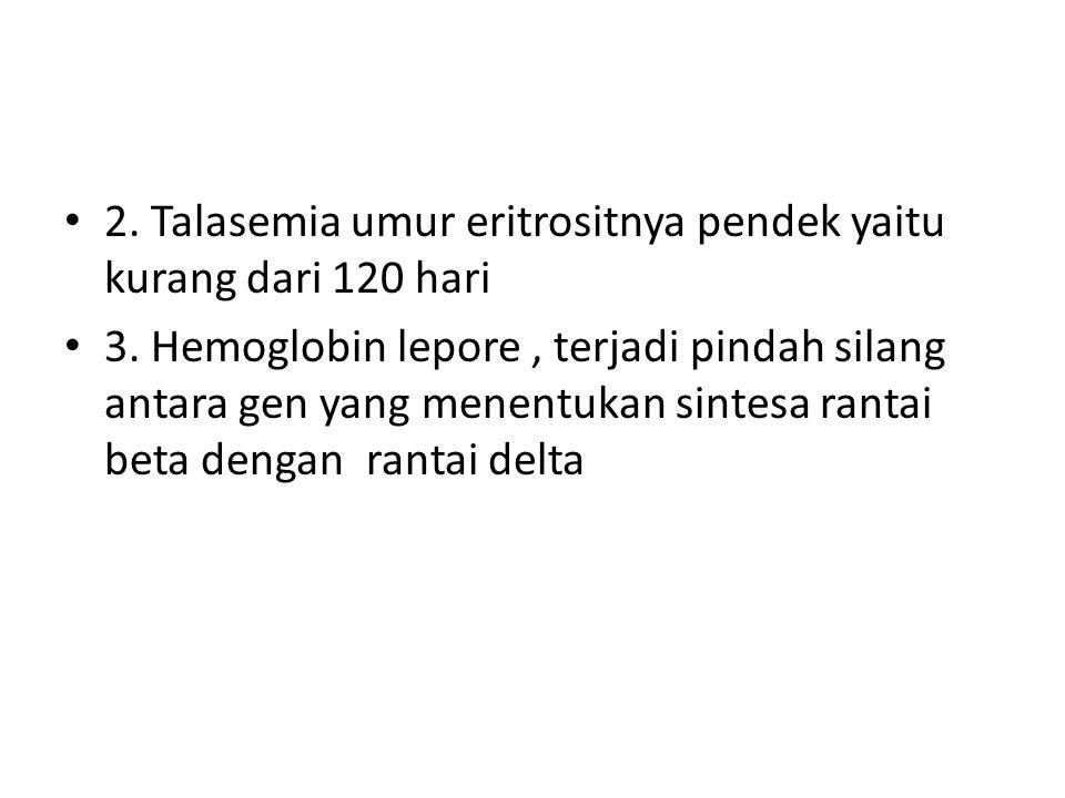 2. Talasemia umur eritrositnya pendek yaitu kurang dari 120 hari 3. Hemoglobin lepore, terjadi pindah silang antara gen yang menentukan sintesa rantai