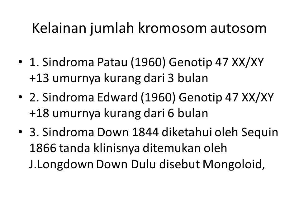 Kelainan jumlah kromosom autosom 1. Sindroma Patau (1960) Genotip 47 XX/XY +13 umurnya kurang dari 3 bulan 2. Sindroma Edward (1960) Genotip 47 XX/XY