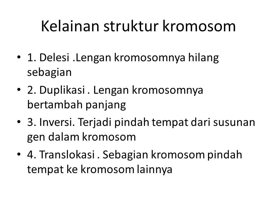 Kelainan struktur kromosom 1. Delesi.Lengan kromosomnya hilang sebagian 2. Duplikasi. Lengan kromosomnya bertambah panjang 3. Inversi. Terjadi pindah