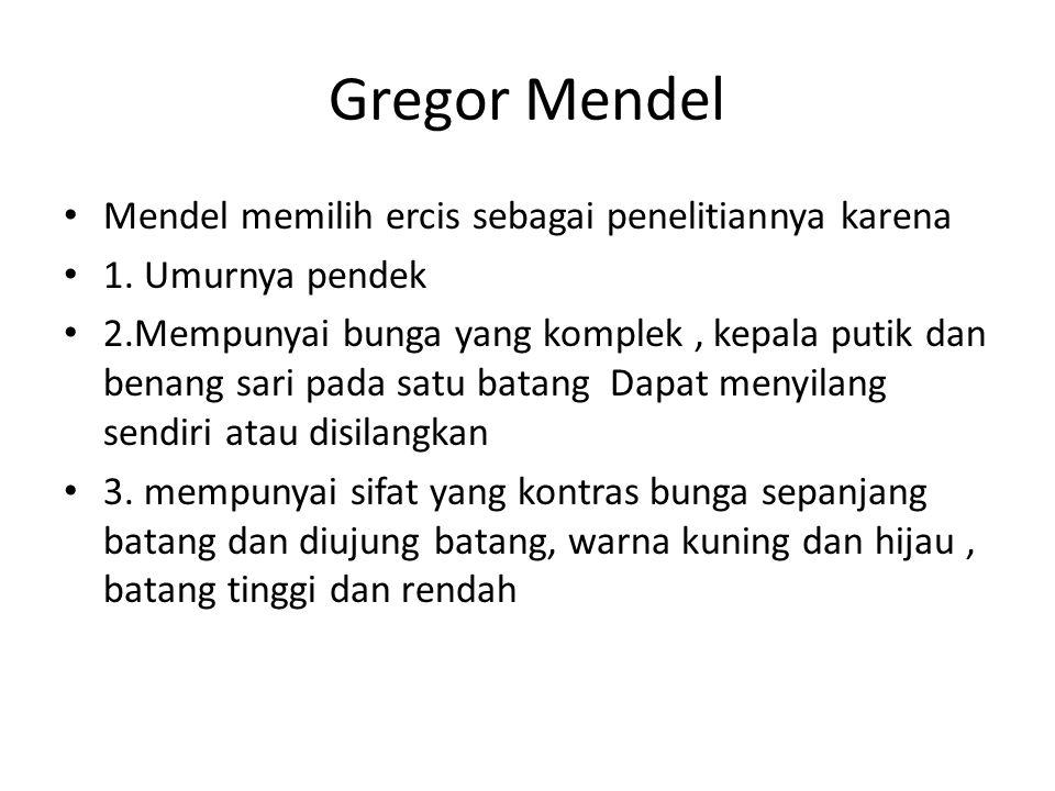 Gregor Mendel Mendel memilih ercis sebagai penelitiannya karena 1. Umurnya pendek 2.Mempunyai bunga yang komplek, kepala putik dan benang sari pada sa