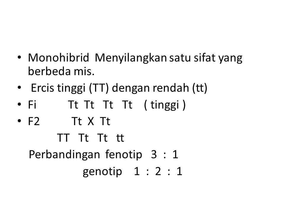 Monohibrid Menyilangkan satu sifat yang berbeda mis. Ercis tinggi (TT) dengan rendah (tt) Fi Tt Tt Tt Tt ( tinggi ) F2 Tt X Tt TT Tt Tt tt Perbandinga
