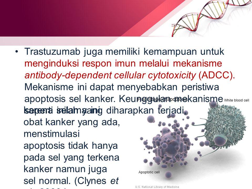Trastuzumab juga memiliki kemampuan untuk menginduksi respon imun melalui mekanisme antibody-dependent cellular cytotoxicity (ADCC).