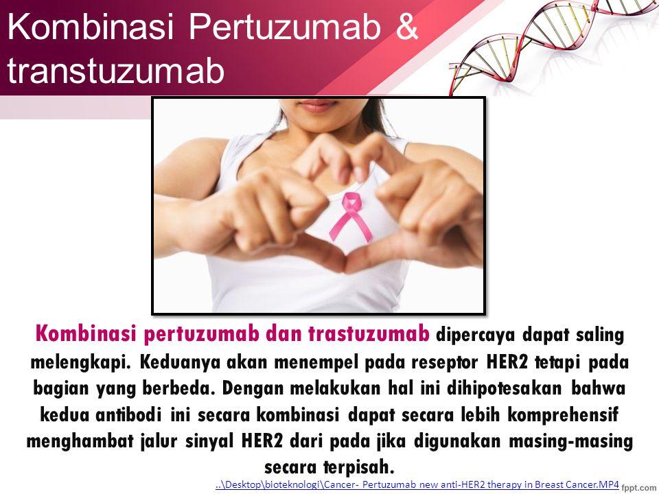 Kombinasi pertuzumab dan trastuzumab dipercaya dapat saling melengkapi.