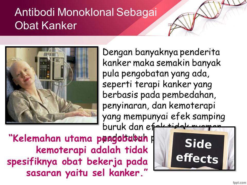 Antibodi Monoklonal Sebagai Obat Kanker Dengan banyaknya penderita kanker maka semakin banyak pula pengobatan yang ada, seperti terapi kanker yang berbasis pada pembedahan, penyinaran, dan kemoterapi yang mempunyai efek samping buruk dan efek tidak nyaman pada tubuh pasien.
