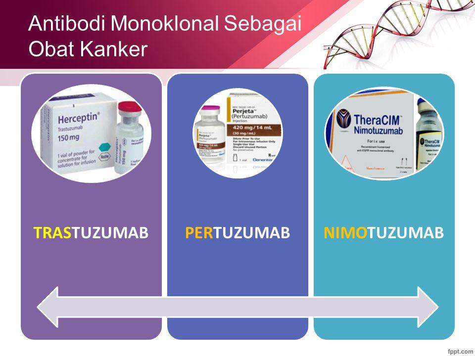 Antibodi Monoklonal Sebagai Obat Kanker TRASTUZUMABPERTUZUMABNIMOTUZUMAB