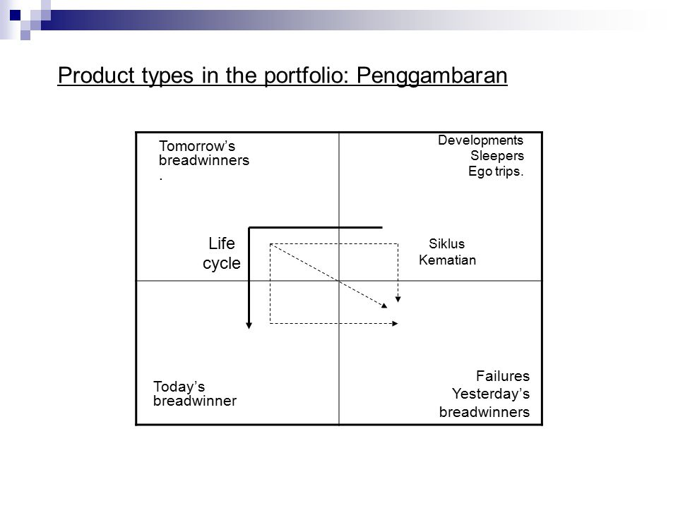 Product types in the portfolio: Penggambaran Failures Yesterday's breadwinners Life cycle Developments Sleepers Ego trips.