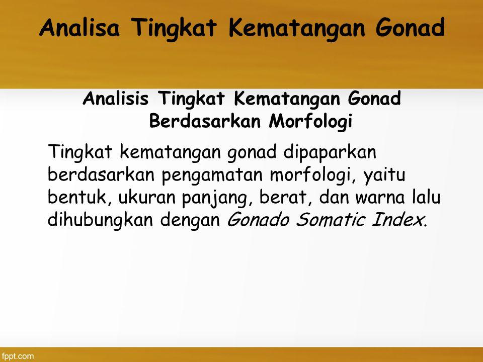 Analisa Tingkat Kematangan Gonad Analisis Tingkat Kematangan Gonad Berdasarkan Morfologi Tingkat kematangan gonad dipaparkan berdasarkan pengamatan morfologi, yaitu bentuk, ukuran panjang, berat, dan warna lalu dihubungkan dengan Gonado Somatic Index.