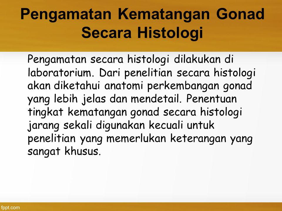 Pengamatan Kematangan Gonad Secara Histologi Pengamatan secara histologi dilakukan di laboratorium. Dari penelitian secara histologi akan diketahui an