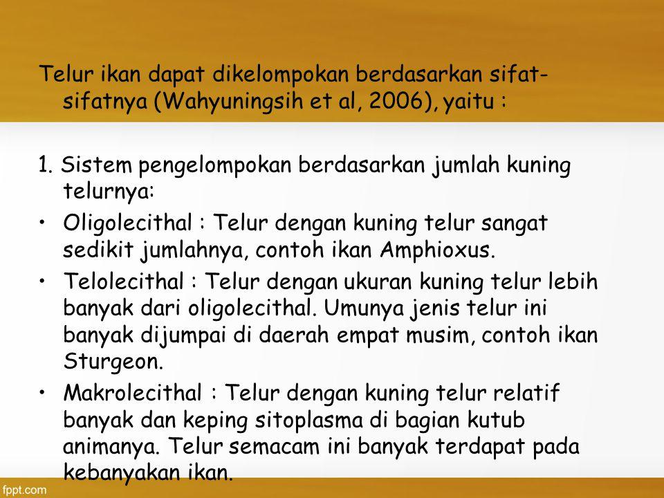 Telur ikan dapat dikelompokan berdasarkan sifat- sifatnya (Wahyuningsih et al, 2006), yaitu : 1. Sistem pengelompokan berdasarkan jumlah kuning telurn