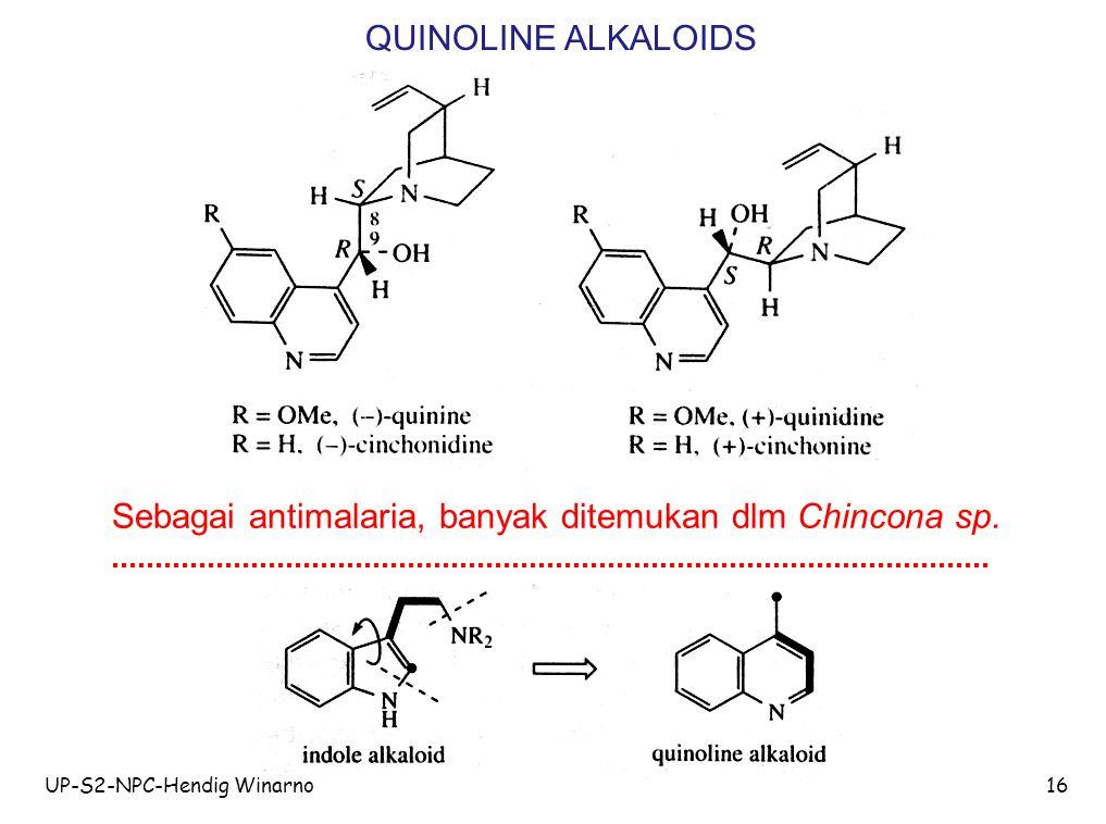 UP-S2-NPC-Hendig Winarno16 QUINOLINE ALKALOIDS Sebagai antimalaria, banyak ditemukan dlm Chincona sp.