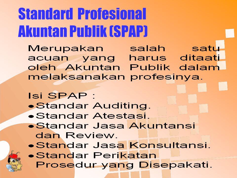 Standard Profesional Akuntan Publik (SPAP)