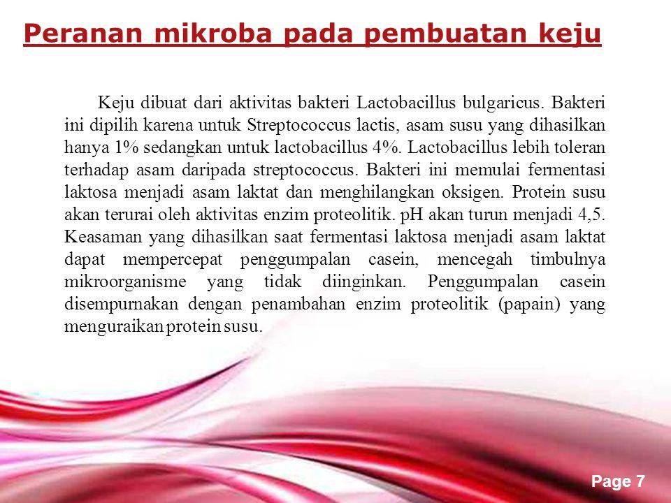 Free Powerpoint Templates Page 7 Keju dibuat dari aktivitas bakteri Lactobacillus bulgaricus.
