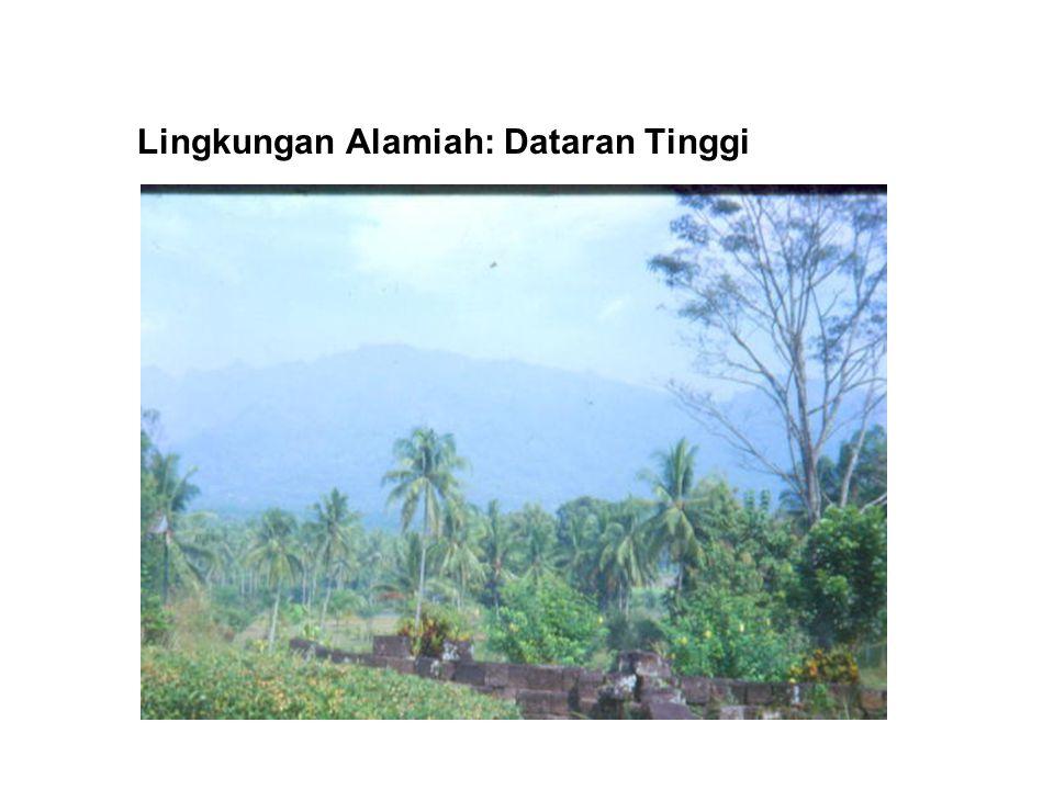 Lingkungan Alamiah: Vegetasi dan Air