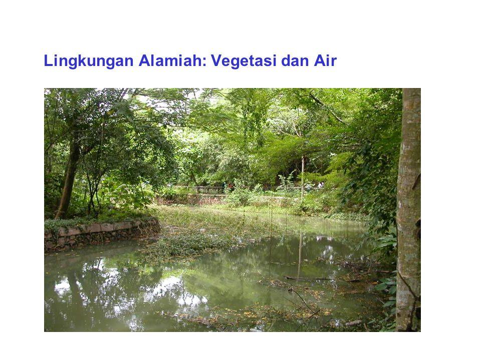 Lingkungan Alamiah: Bukit dan Air