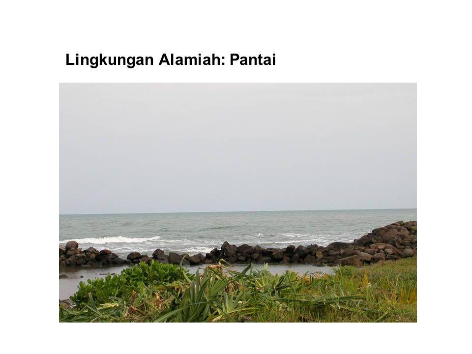 Lingkungan Binaan-9