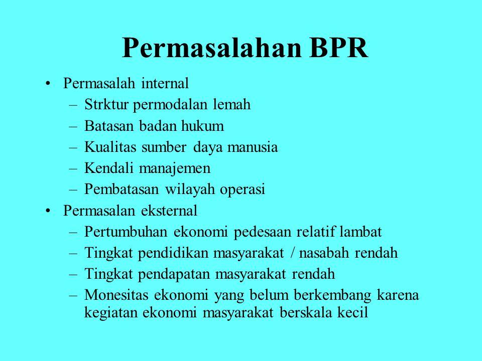 Permasalahan BPR Permasalah internal –Strktur permodalan lemah –Batasan badan hukum –Kualitas sumber daya manusia –Kendali manajemen –Pembatasan wilay
