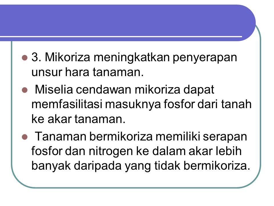 3.Mikoriza meningkatkan penyerapan unsur hara tanaman.