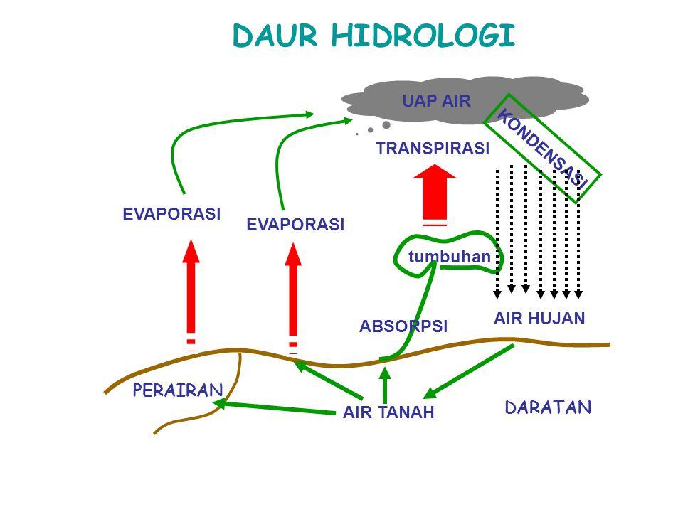 DAUR HIDROLOGI PERAIRAN AIR TANAH EVAPORASI TRANSPIRASI UAP AIR KONDENSASI AIR HUJAN ABSORPSI DARATAN tumbuhan