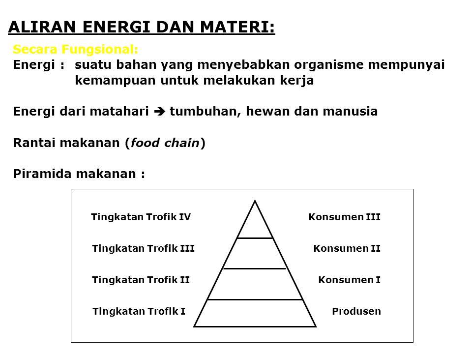 ALIRAN ENERGI DAN MATERI: Secara Fungsional: Energi:suatu bahan yang menyebabkan organisme mempunyai kemampuan untuk melakukan kerja Energi dari matahari  tumbuhan, hewan dan manusia Rantai makanan (food chain) Piramida makanan : Tingkatan Trofik IV Tingkatan Trofik III Tingkatan Trofik II Tingkatan Trofik I Konsumen III Konsumen II Konsumen I Produsen