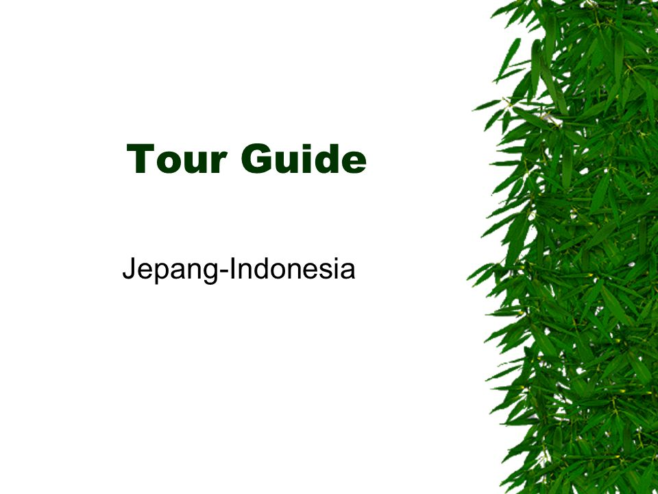 Tour Guide Jepang-Indonesia