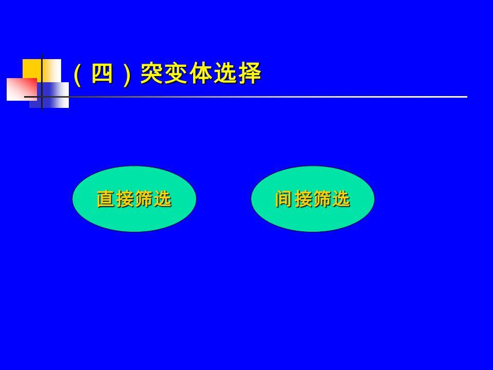 (四)突变体选择 直接筛选间接筛选