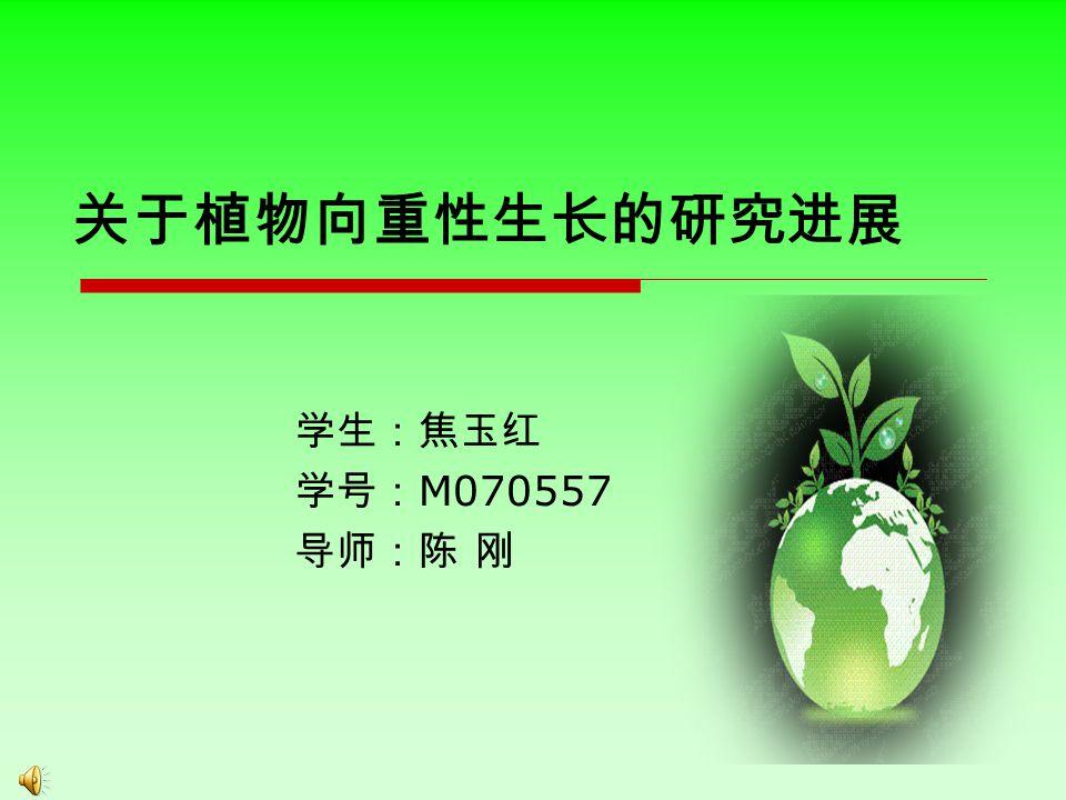 关于植物向重性生长的研究进展 学生:焦玉红 学号: M070557 导师:陈 刚