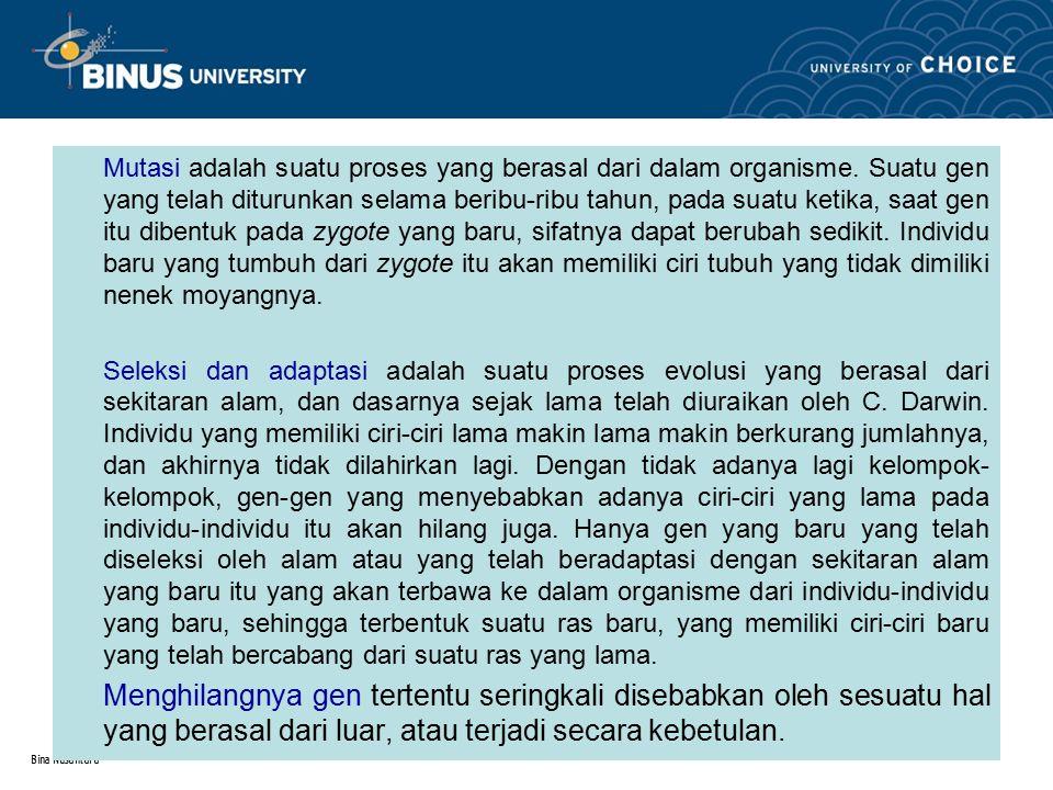 Bina Nusantara 2.2.Evolusi Primat Dan Manusia  Proses Percabangan Makhluk Primat.