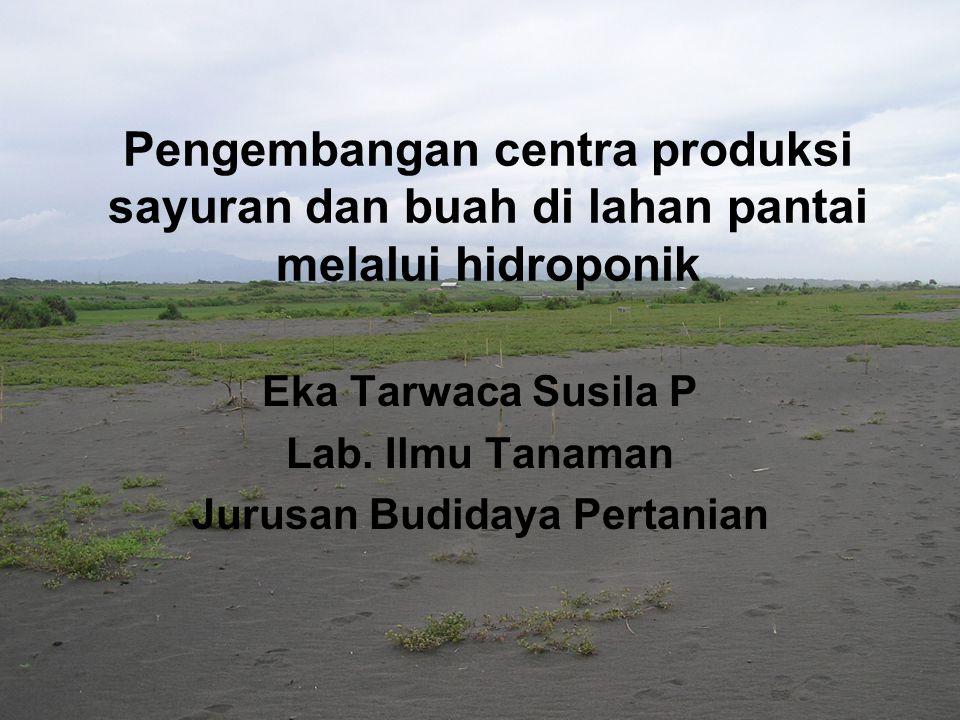 Pengembangan centra produksi sayuran dan buah di lahan pantai melalui hidroponik Eka Tarwaca Susila P Lab. Ilmu Tanaman Jurusan Budidaya Pertanian