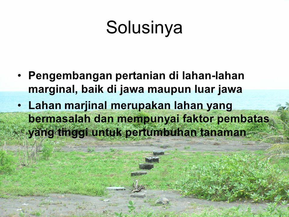 Solusinya Pengembangan pertanian di lahan-lahan marginal, baik di jawa maupun luar jawa Lahan marjinal merupakan lahan yang bermasalah dan mempunyai f