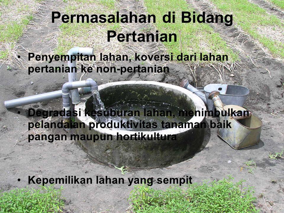 Lahan Marjinal Di jawa yang potensial dikembangkan sebagai lahan pertanian adalah lahan pantai Pulau Jawa memiliki pantai yang luas (81.000 km) Apabila lahan pantai di Jawa dapat digunakan sebagai lahan pertanian, stabilitas produksi pertanian terjaga