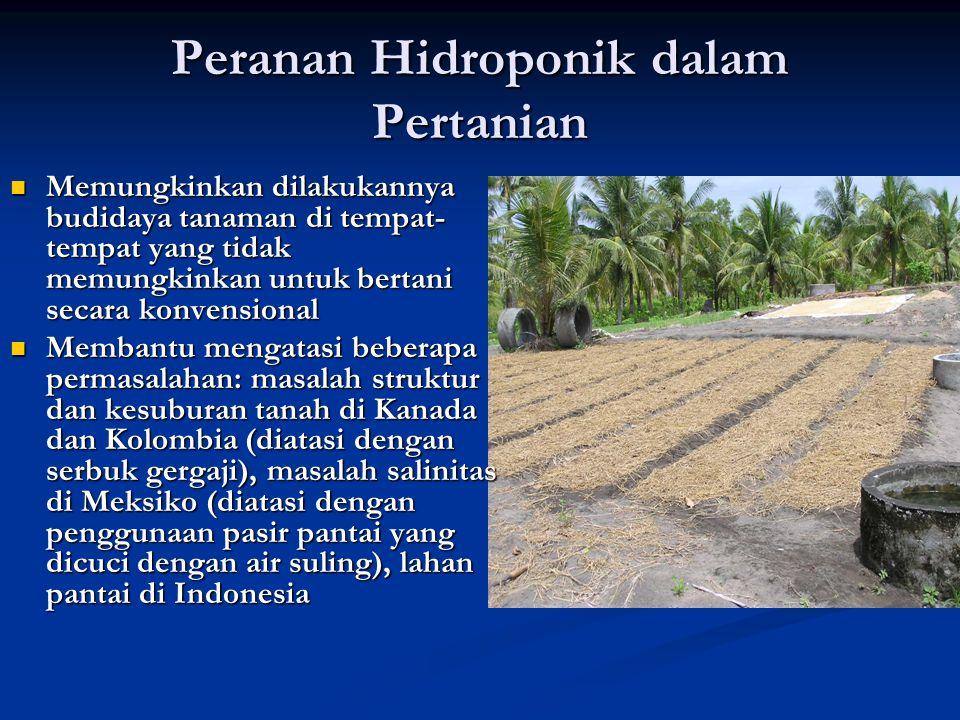 Peranan Hidroponik dalam Pertanian Memungkinkan dilakukannya budidaya tanaman di tempat- tempat yang tidak memungkinkan untuk bertani secara konvensio