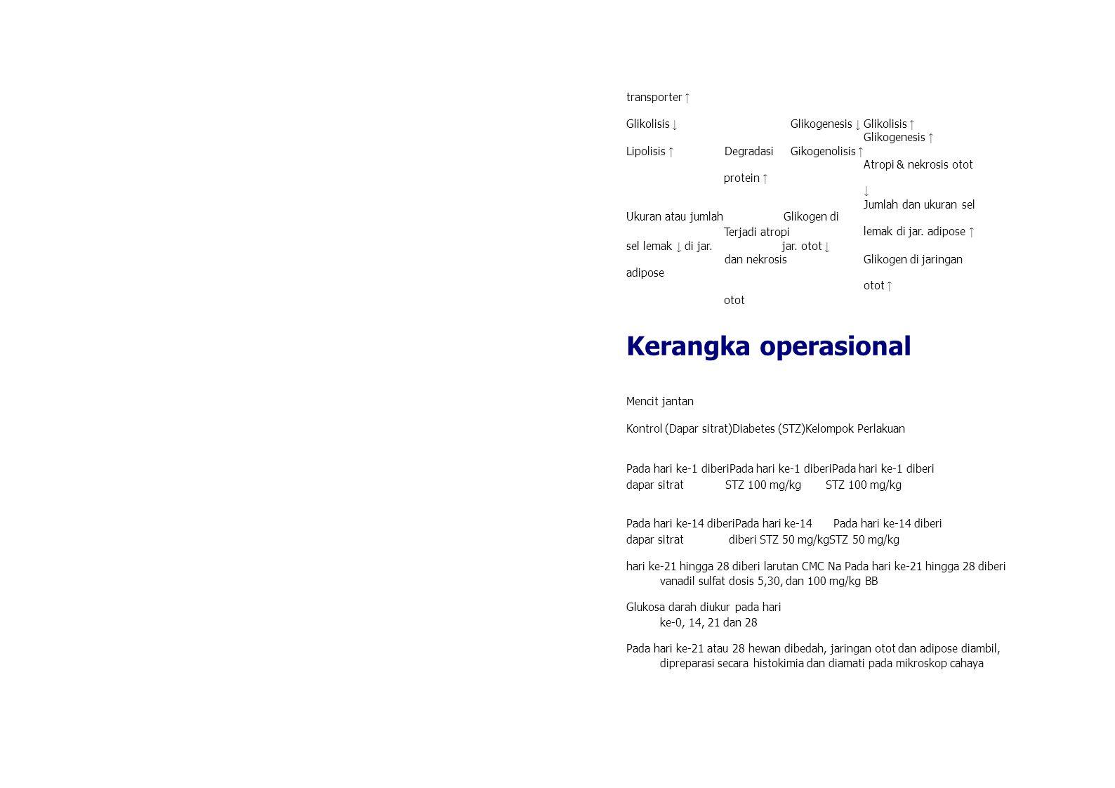 transporter ↑ Glikolisis ↓ Glikogenesis ↓ Glikolisis ↑ Glikogenesis ↑ Lipolisis ↑ Degradasi Gikogenolisis ↑ Atropi & nekrosis otot ↓ Jumlah dan ukuran