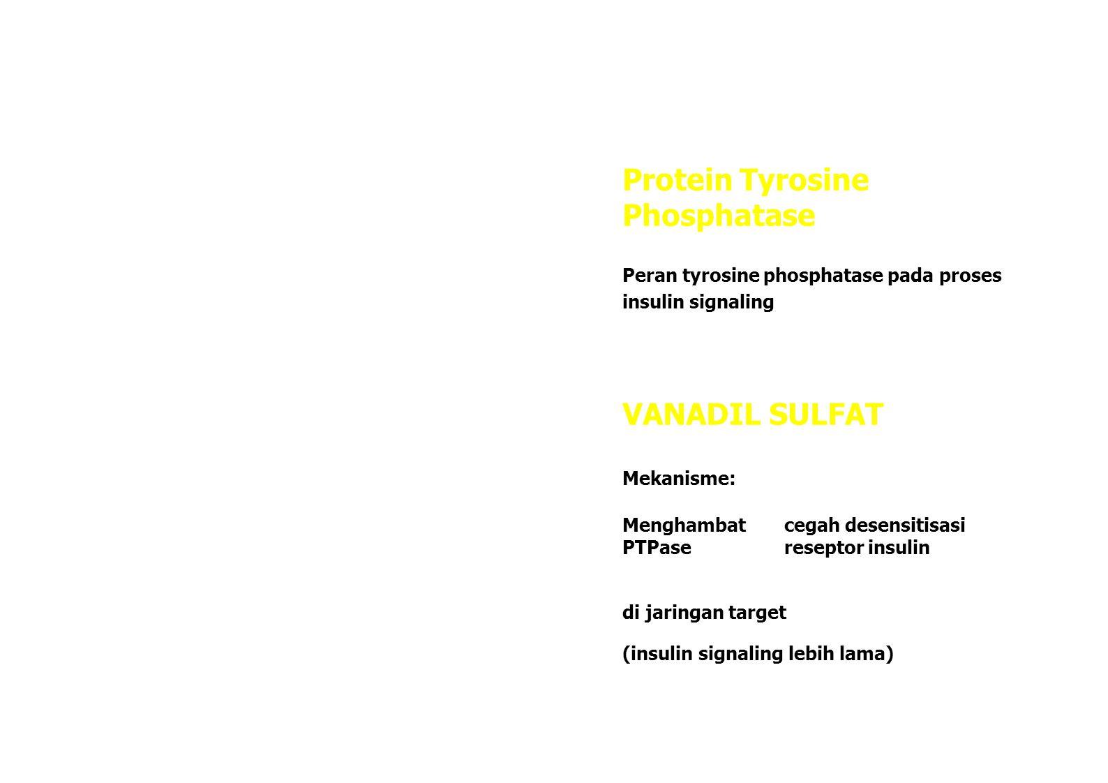 Uptake glukosa darah ke jaringan ↑ Glukosa darah ↓ Efek : Glukosa darah ↓ Toleransi glukosa ↑ BERPOTENSI sebagai Insulin plasma ↑ antidiabetic agent Glikogen hati ↑ memperbaiki abnormalitas enzim (Verma, 1998; PENGARUH TERHADAP PERUBAHAN PDR Health Info, 1999) JARINGAN OTOT DAN ADIPOSE