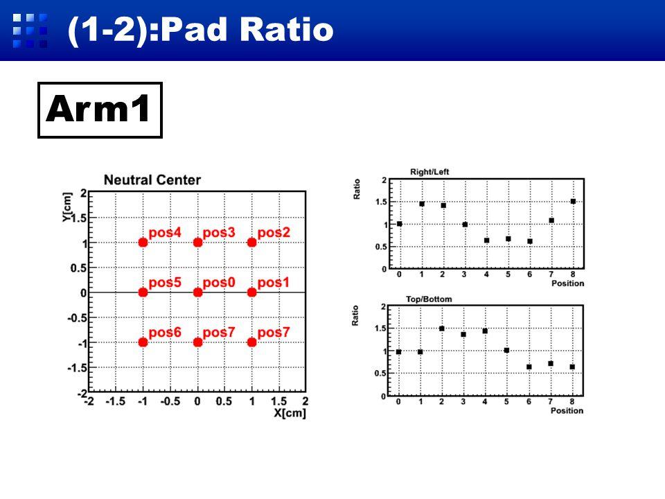 (1-2):Pad Ratio Arm2