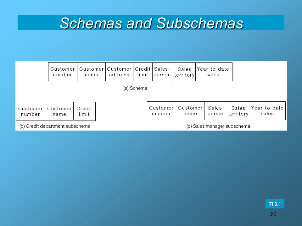 50 Schemas and Subschemas TI 3.1