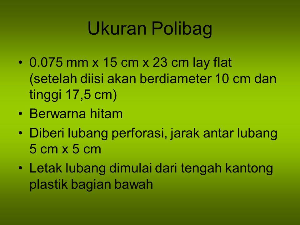 Ukuran Polibag 0.075 mm x 15 cm x 23 cm lay flat (setelah diisi akan berdiameter 10 cm dan tinggi 17,5 cm) Berwarna hitam Diberi lubang perforasi, jarak antar lubang 5 cm x 5 cm Letak lubang dimulai dari tengah kantong plastik bagian bawah