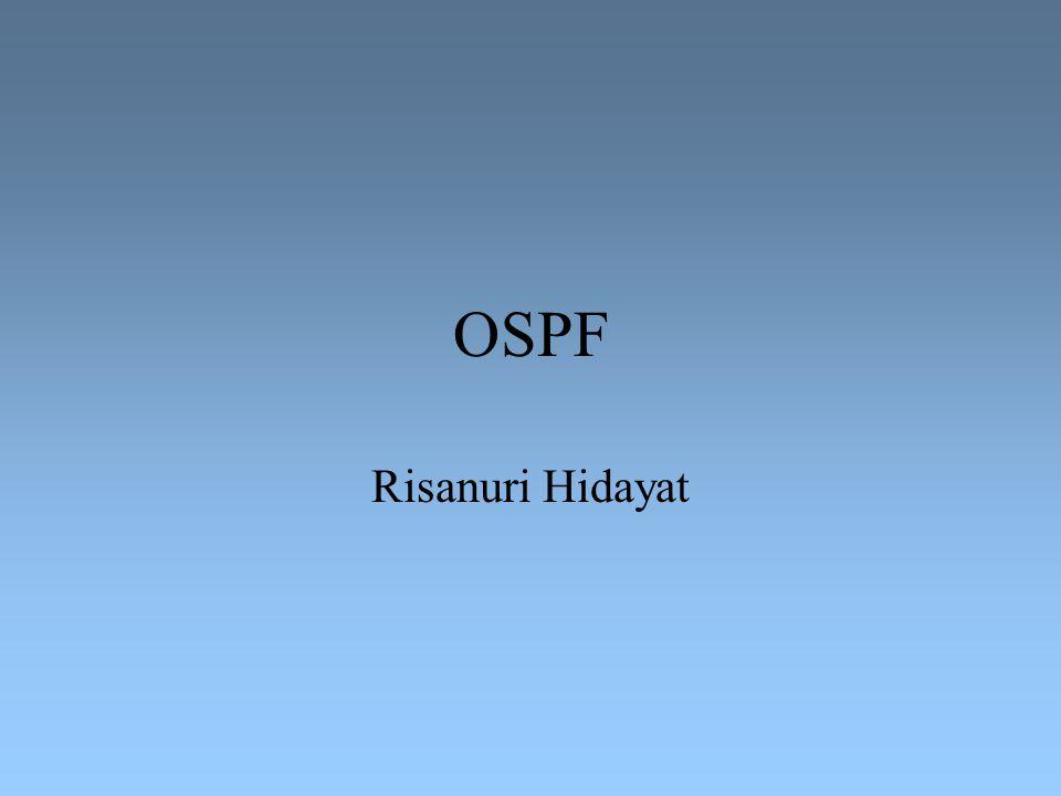 OSPF Risanuri Hidayat
