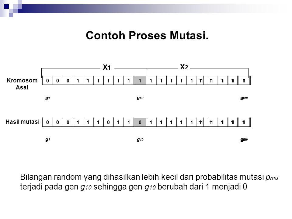Contoh Proses Mutasi.