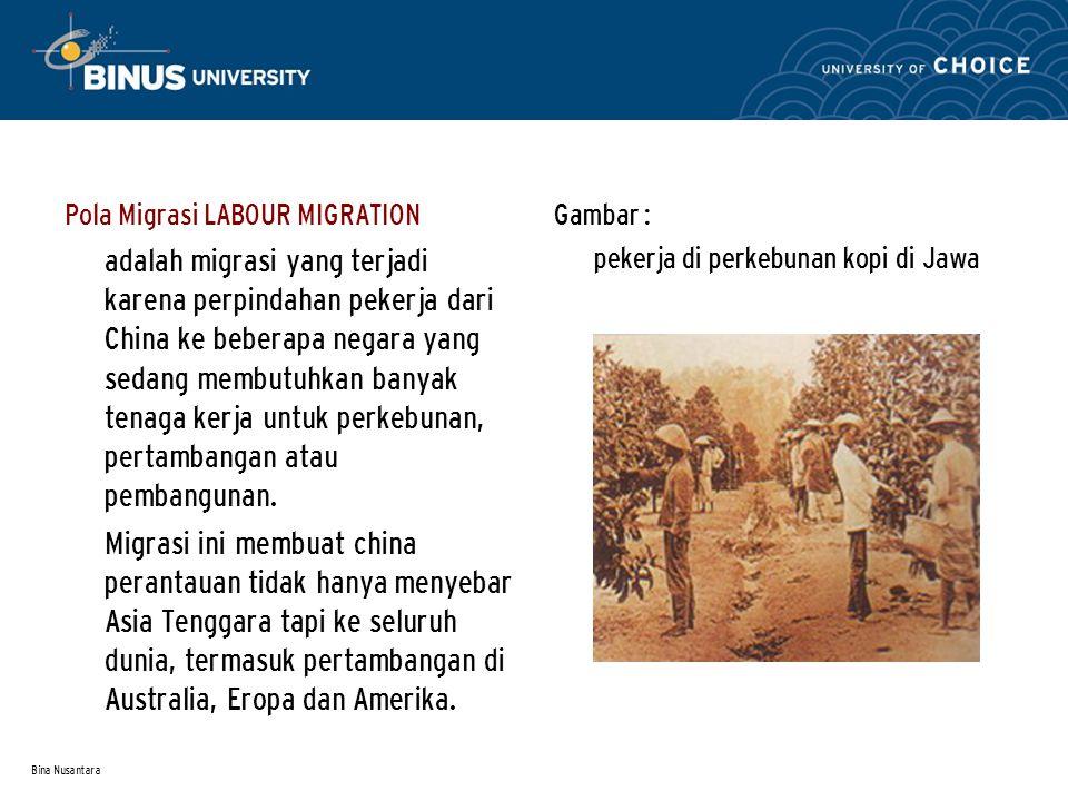 Pola Migrasi LABOUR MIGRATION adalah migrasi yang terjadi karena perpindahan pekerja dari China ke beberapa negara yang sedang membutuhkan banyak tenaga kerja untuk perkebunan, pertambangan atau pembangunan.