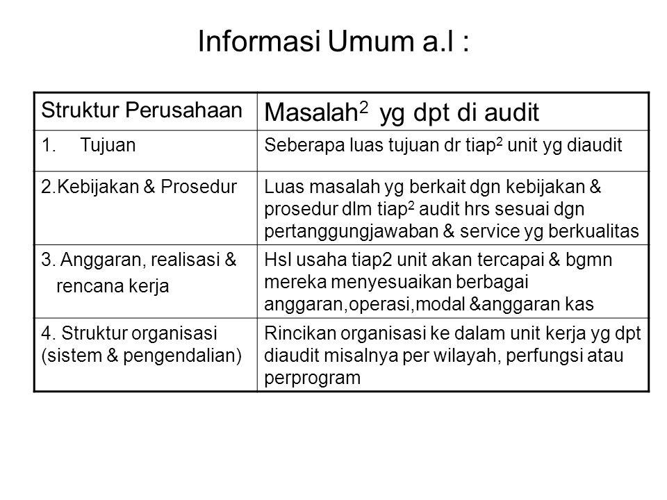 Informasi Umum a.l : Struktur Perusahaan Masalah 2 yg dpt di audit 1.TujuanSeberapa luas tujuan dr tiap 2 unit yg diaudit 2.Kebijakan & ProsedurLuas m