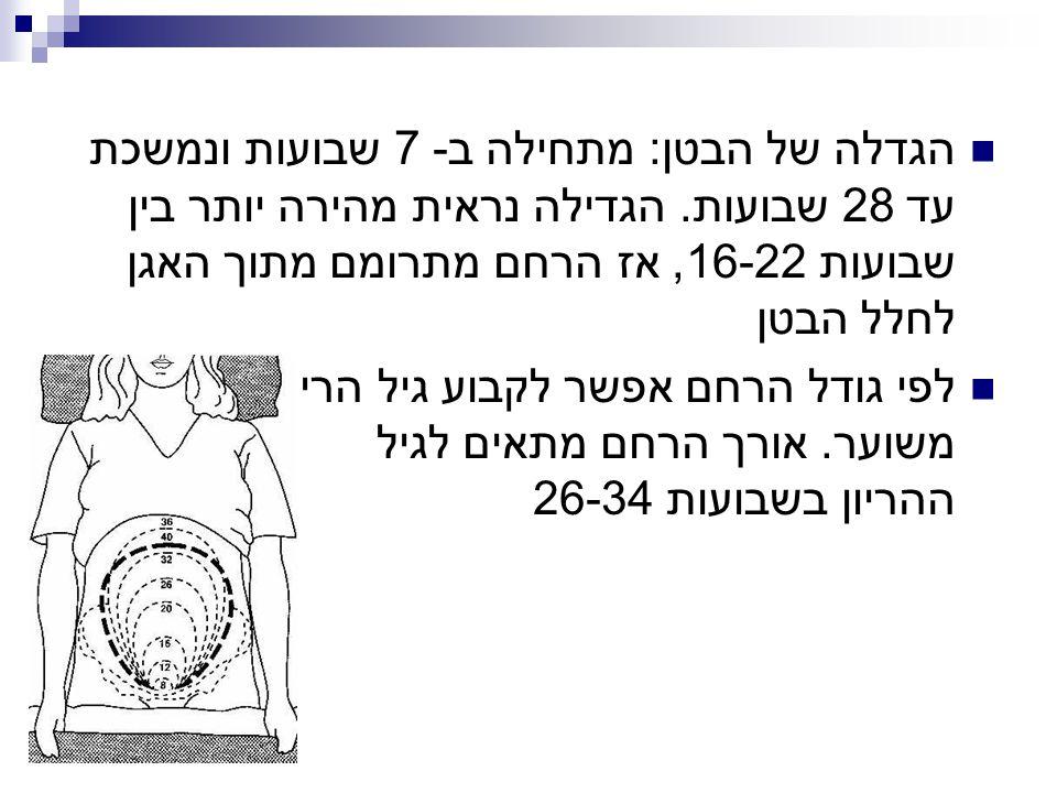 הגדלה של הבטן: מתחילה ב- 7 שבועות ונמשכת עד 28 שבועות. הגדילה נראית מהירה יותר בין שבועות 16-22, אז הרחם מתרומם מתוך האגן לחלל הבטן לפי גודל הרחם אפשר